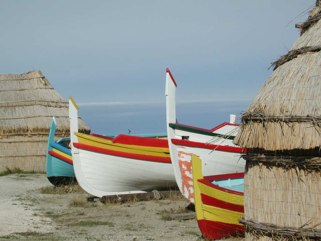 A shot of old multi colored hull boats at the oceans shore.