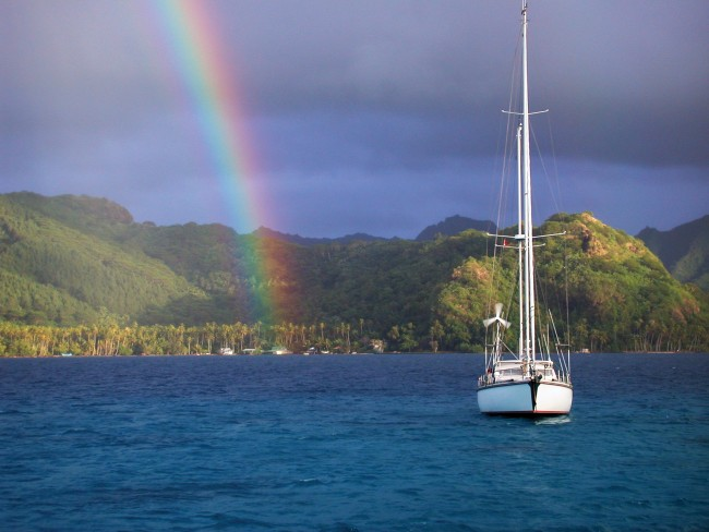 Polynesian Rainbow follow boat in harbor