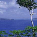 Tonga View